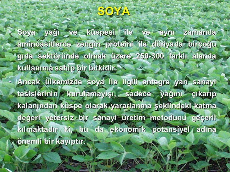 SOYA Soya yağı ve küspesi ile ve aynı zamanda aminoasitlerce zengin proteini ile dünyada birçoğu gıda sektöründe olmak üzere 250-300 farklı alanda kul