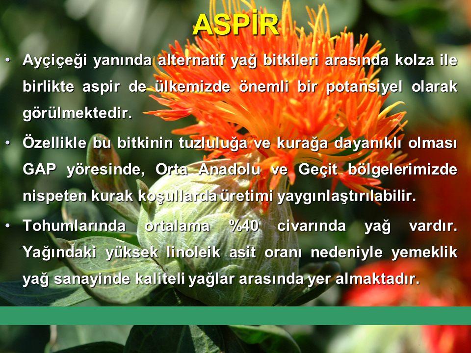 ASPİR Ayçiçeği yanında alternatif yağ bitkileri arasında kolza ile birlikte aspir de ülkemizde önemli bir potansiyel olarak görülmektedir.Ayçiçeği yan