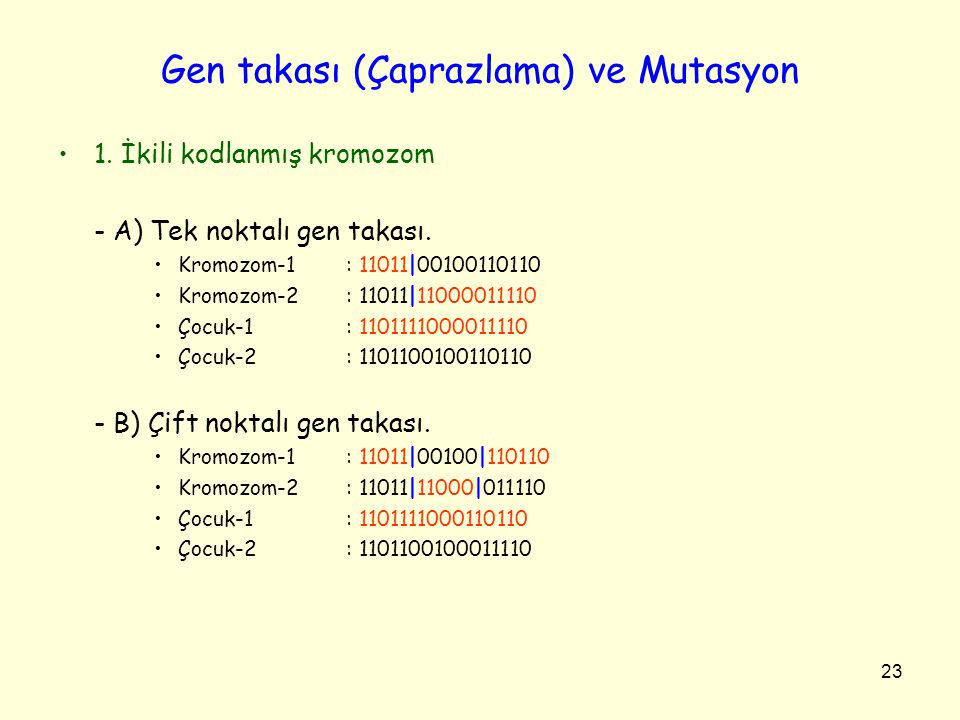 23 Gen takası (Çaprazlama) ve Mutasyon 1. İkili kodlanmış kromozom - A) Tek noktalı gen takası. Kromozom-1: 11011|00100110110 Kromozom-2: 11011|110000