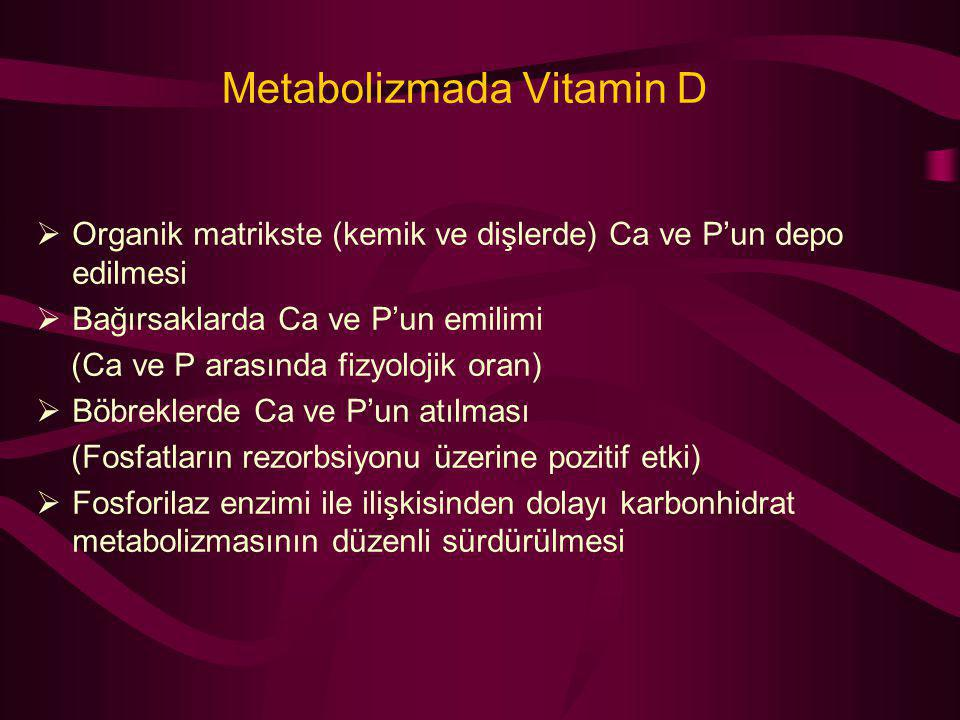 Metabolizmada Vitamin D  Organik matrikste (kemik ve dişlerde) Ca ve P'un depo edilmesi  Bağırsaklarda Ca ve P'un emilimi (Ca ve P arasında fizyoloj