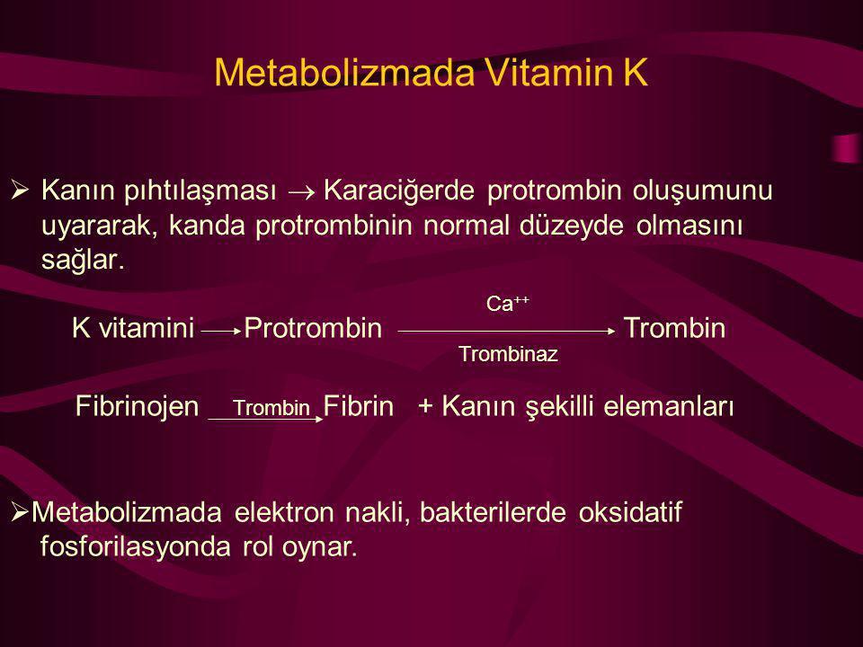 Metabolizmada Vitamin K  Kanın pıhtılaşması  Karaciğerde protrombin oluşumunu uyararak, kanda protrombinin normal düzeyde olmasını sağlar. K vitamin