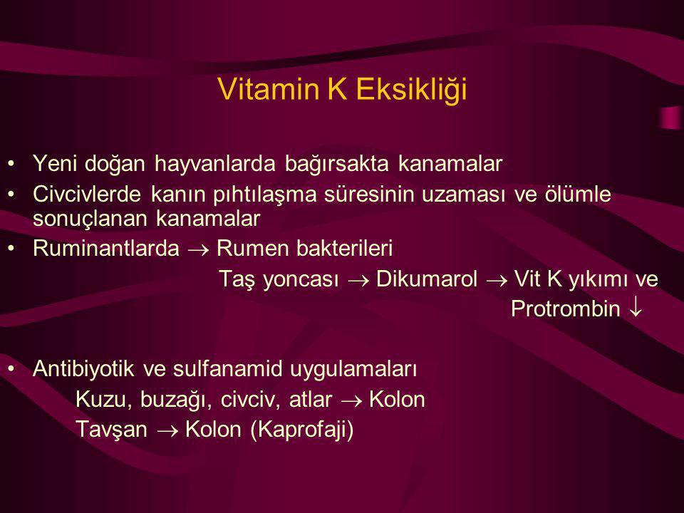 Vitamin K Eksikliği Yeni doğan hayvanlarda bağırsakta kanamalar Civcivlerde kanın pıhtılaşma süresinin uzaması ve ölümle sonuçlanan kanamalar Ruminant