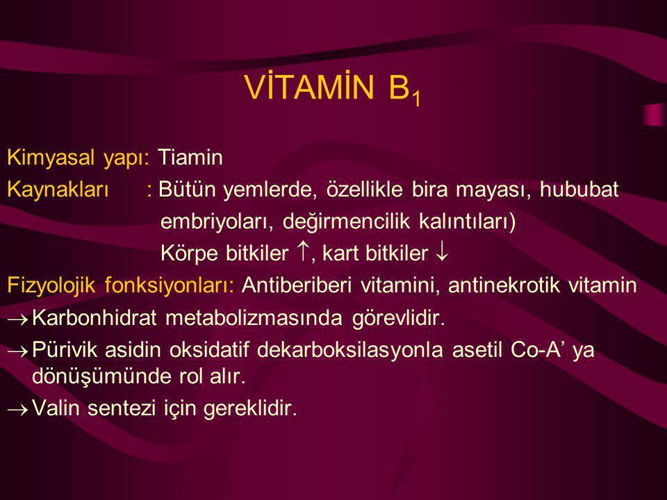VİTAMİN B 1 Kimyasal yapı: Tiamin Kaynakları : Bütün yemlerde, özellikle bira mayası, hububat embriyoları, değirmencilik kalıntıları) Körpe bitkiler 