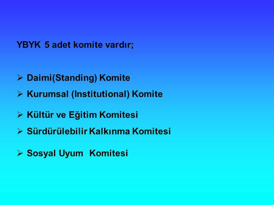 YBYK 5 adet komite vardır;  Daimi(Standing) Komite  Kurumsal (Institutional) Komite  Kültür ve Eğitim Komitesi  Sürdürülebilir Kalkınma Komitesi 