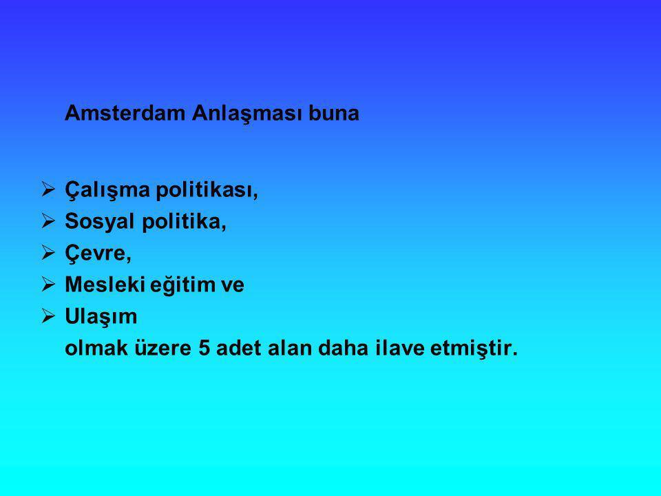 Amsterdam Anlaşması buna  Çalışma politikası,  Sosyal politika,  Çevre,  Mesleki eğitim ve  Ulaşım olmak üzere 5 adet alan daha ilave etmiştir.
