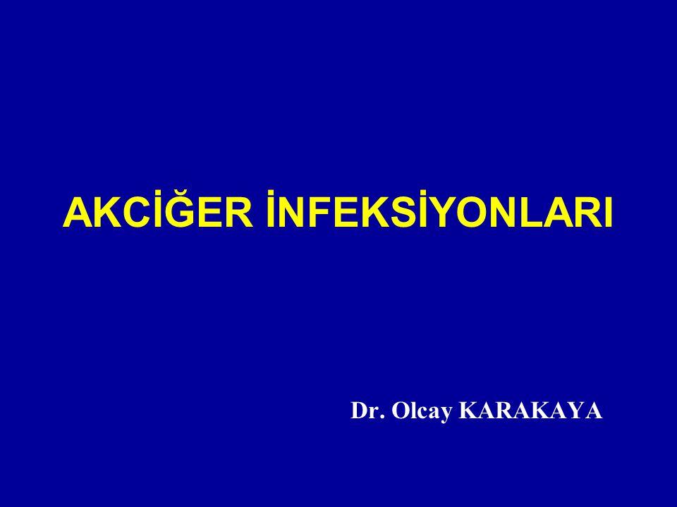 AKCİĞER İNFEKSİYONLARI Dr. Olcay KARAKAYA