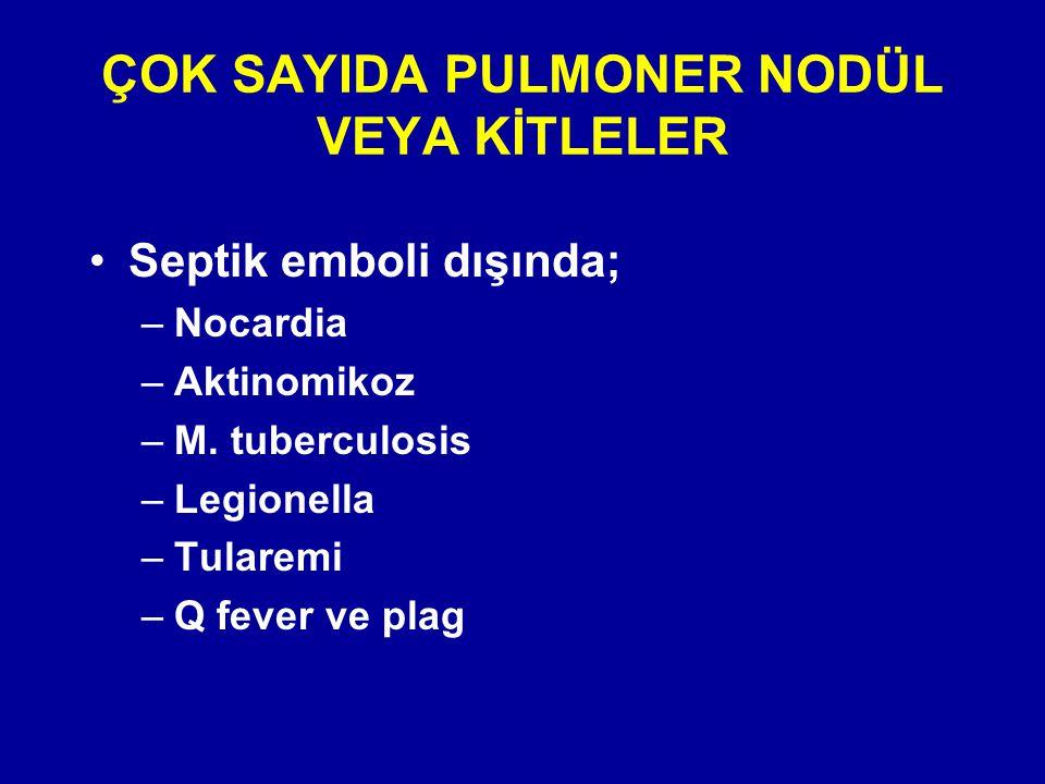 ÇOK SAYIDA PULMONER NODÜL VEYA KİTLELER Septik emboli dışında; –Nocardia –Aktinomikoz –M. tuberculosis –Legionella –Tularemi –Q fever ve plag