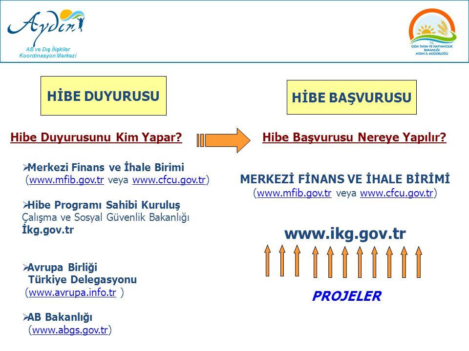 AB ve Dış İlişkiler Koordinasyon Merkezi Hibe Programlarına Nasıl Başvurulur? HİBE DUYURUSU  Merkezi Finans ve İhale Birimi (www.mfib.gov.tr veya www