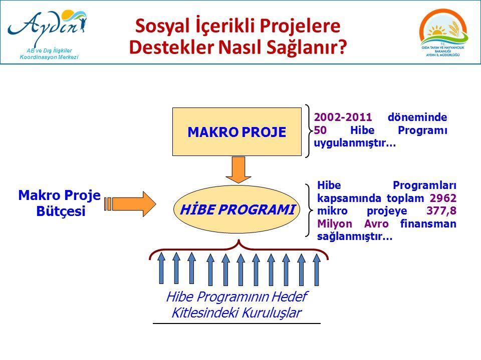 AB ve Dış İlişkiler Koordinasyon Merkezi MAKRO PROJE Makro Proje Bütçesi HİBE PROGRAMI Hibe Programının Hedef Kitlesindeki Kuruluşlar 2002-2011 dönemi