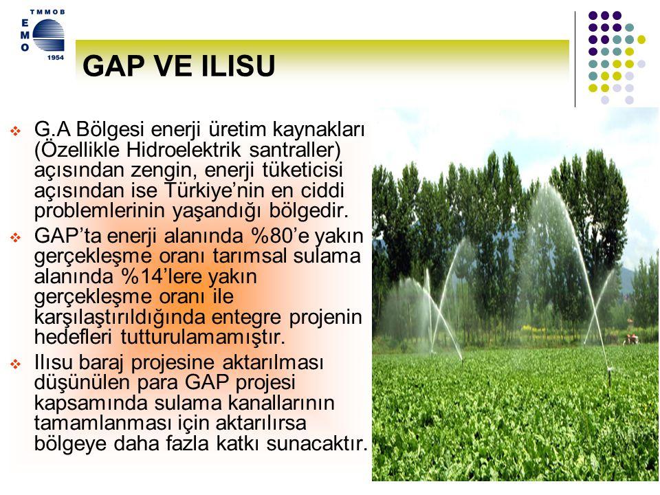 13 Enerjiden Tasarruf Edilerek de Ilısu Barajı Kapasitesinde Enerji Yatırımı Yapılabilir.