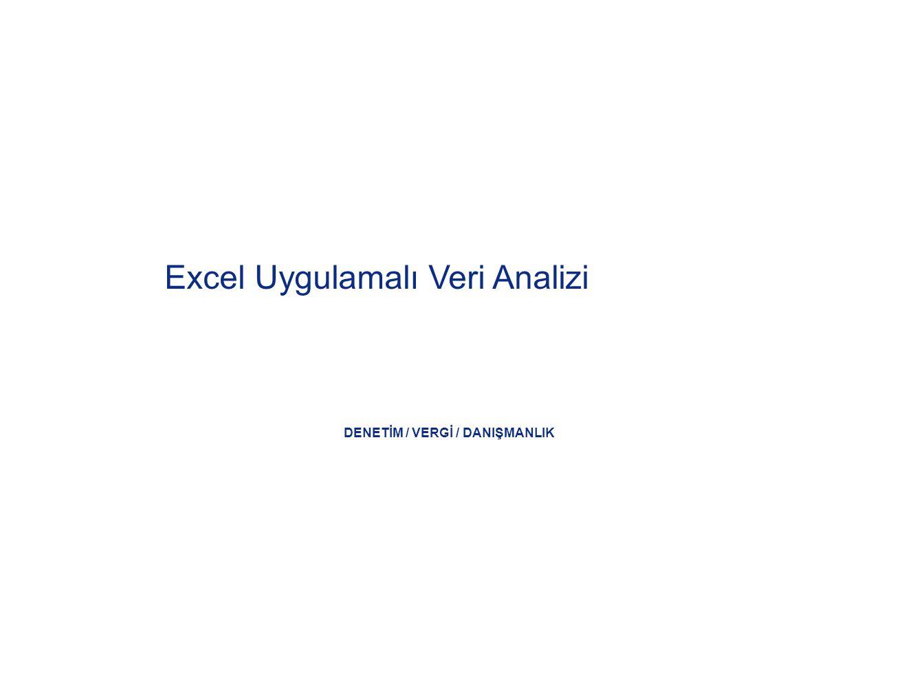 DENETİM / VERGİ / DANIŞMANLIK Excel Uygulamalı Veri Analizi