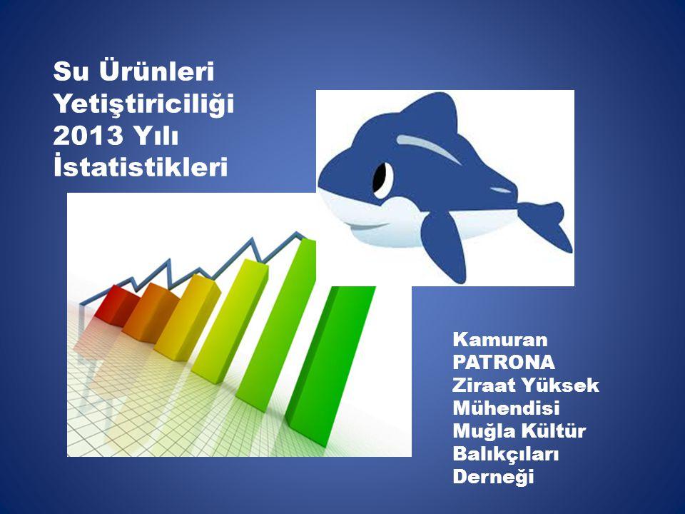 Su Ürünleri Yetiştiriciliği 2013 Yılı İstatistikleri Kamuran PATRONA Ziraat Yüksek Mühendisi Muğla Kültür Balıkçıları Derneği
