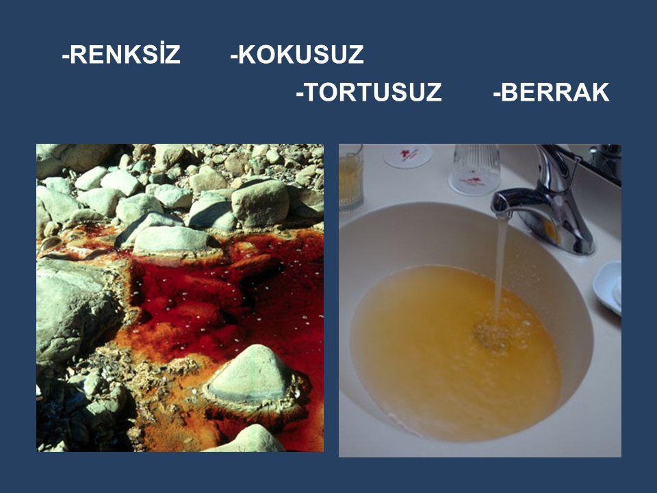 -RENKSİZ-KOKUSUZ -TORTUSUZ-BERRAK