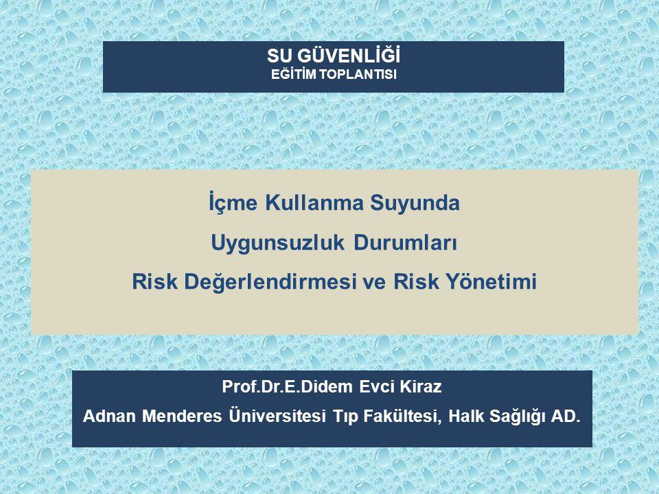 Ara Tanımlar Risk noktalarıRisk analizi