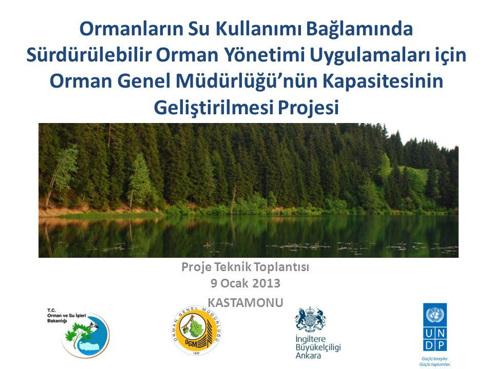 Bölmecik Bazında Münferit Silvikültürel Planlama FRIS Projesi GEF II Projesi Akdeniz Model Orman Ağı Projesi Türk Ulusal Orman Envanteri Temelinin Oluşturulması Projesi FAO, Türkiye-Suriye Amenajman Planı Yapım Projesi Anadolu Çaprazı Biyolojik Çeşitlilik Projesi Orman Genel Müdürlüğü Biyolojik Çeşitlilik Eylem Planı Hazırlanması Projesi Ekosistem Tabanlı Çok Amaçlı Planlama Prototip Modelinin Yöneylem Araştırması ve Coğrafi Bilgi Sistemleri ile Geliştirilmesi ve Farklı Orman Ekosistemlerinde Katılımcı Yaklaşımla Uygulanması Projesi Küre Dağları Milli Parkı ve Tampon Bölgesinde Biyolojik Çeşitlilik ve Doğal Kaynak Yönetimi Projesi Kaçkar Dağları Sürdürülebilir Orman Kullanımı ve Koruma Projesi ORMAN İDARESİ ve PLANLAMA DAİRESİ BAŞKANLIĞINCA GERÇEKLEŞTİRİLEN PROJELER