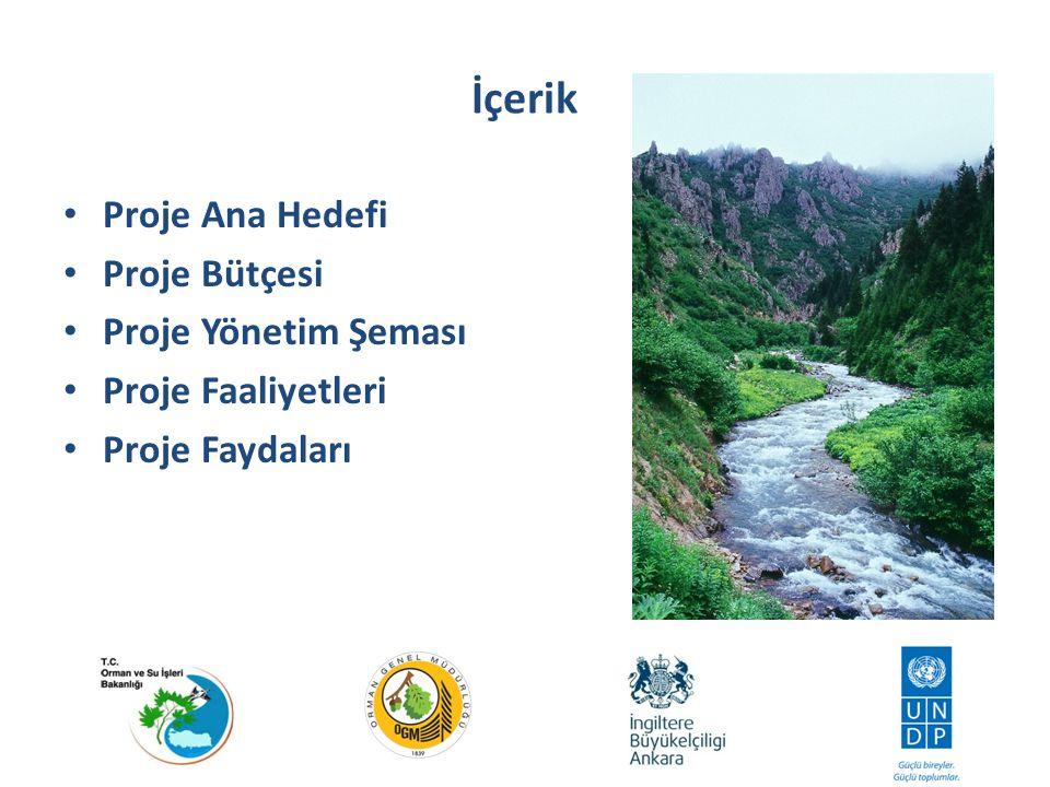 Projenin Ana Hedefi Ormanların amenajmanı ve su kaynaklarının sürdürülebilirliğine yönelik politika ve stratejilerin gözden geçirilmesi.