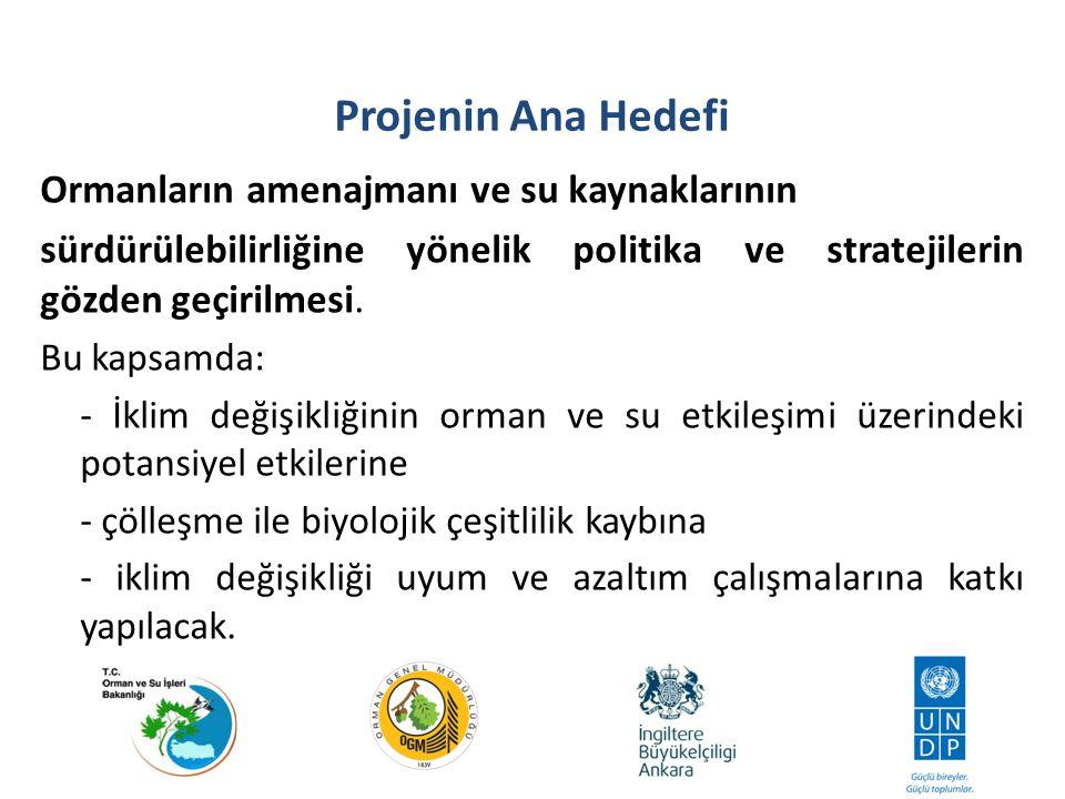 1.2 Sürdürülebilir orman yönetimi, kamu ortaklıkları ve özel ortaklıklar aracılığıyla; ormanların, su, toprak ve yerel düzeyde meydana gelen suyla bağlantılı doğal afetlerin azaltılması açısından koruyucu işlevinin belirtilmesi.