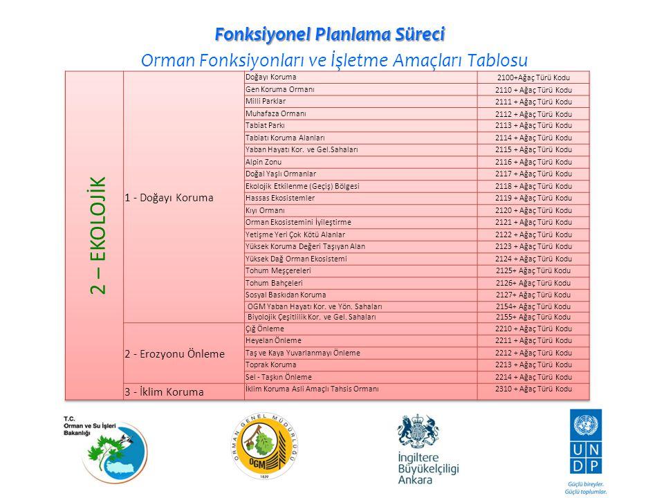 Fonksiyonel Planlama Süreci Orman Fonksiyonları ve İşletme Amaçları Tablosu