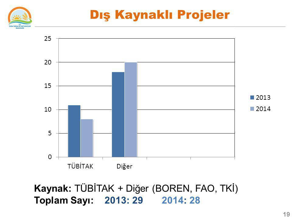 Dış Kaynaklı Projeler Kaynak: TÜBİTAK + Diğer (BOREN, FAO, TKİ) Toplam Sayı: 2013: 29 2014: 28 19