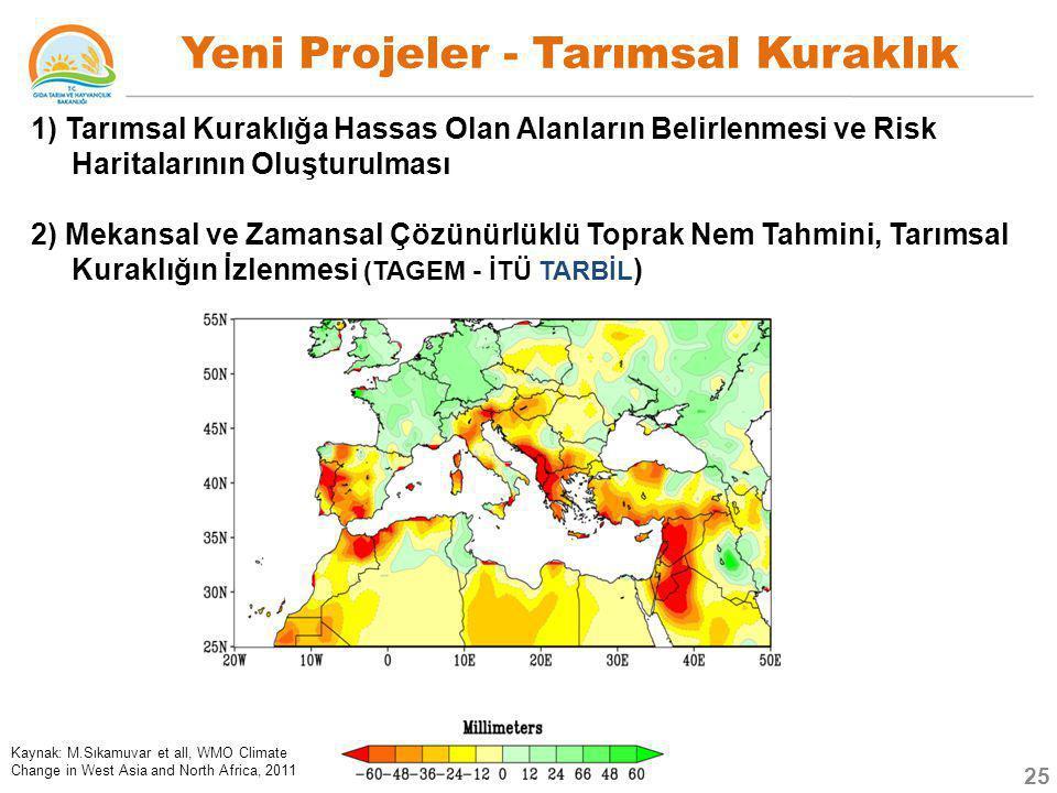 1) Tarımsal Kuraklığa Hassas Olan Alanların Belirlenmesi ve Risk Haritalarının Oluşturulması 2) Mekansal ve Zamansal Çözünürlüklü Toprak Nem Tahmini,