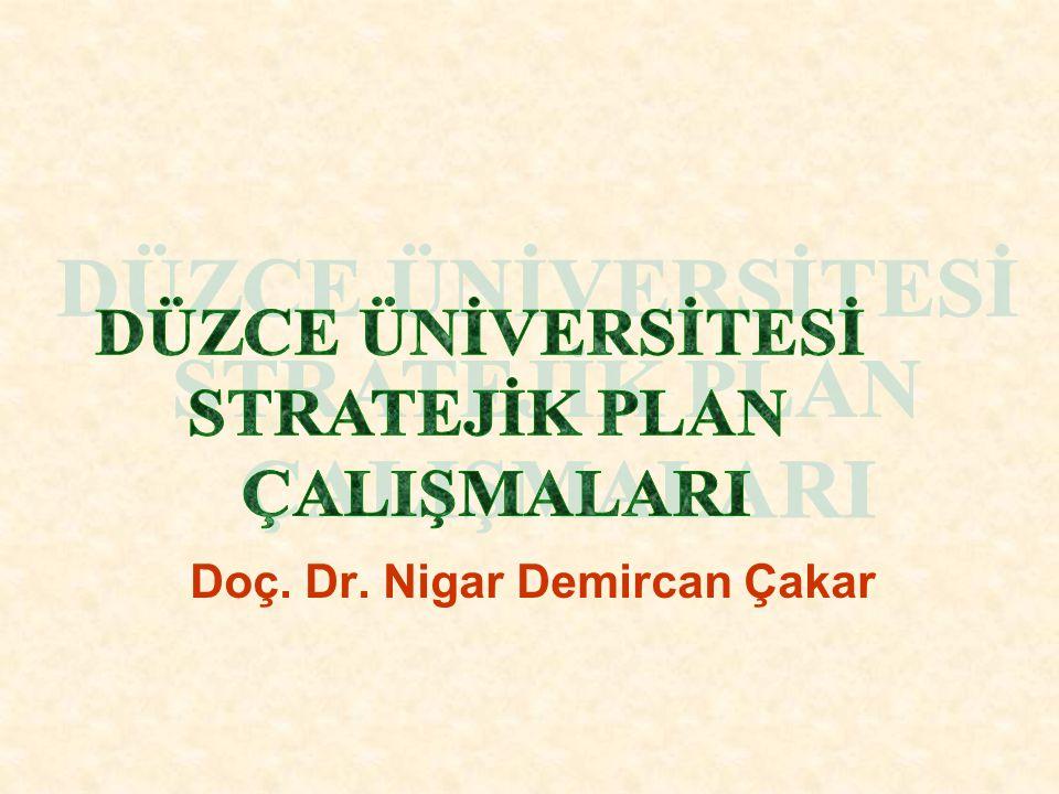 Örnek GZFT Analizi (Dokuz Eylül Üniversitesi) Fırsatlar Yüksek öğrenime artan talep Yeni eğitim modellerine artan ilgi Üniversitelerin ulusal refahın sağlanmasındaki rolünün anlaşılması Bilim ve teknolojideki gelişmeler Üniversitenin coğrafi konumu Uzmanlaşmanın önem kazanması Küreselleşme Üniversite ve sektör arasında artan işbirliği Kalifiye işgücüne artan gereksinim Türkiye'nin genç nüfus yapısı Özel ve kamu sektöründe bilimsel proje ve çalışmalara artan talep Merkezlerin uluslararası işbirliği olanakları AB süreci ve fonları Tehditler Tahsisatların azlığı Değişken hükümet politikaları Ekonomik ve politik istikrarsızlık Teknolojik değişimdeki hızlı devinim Bürokratik sınırlamalar Öğrencilerin fiziksel koşullarla ilgili taleplerinin artması Öğretim üyelerinin ücretlerinin yetersizliği Orta öğretim kalitesinin yetersizliği Özel üniversitelerin rekabetçi yanları Araştırma ve geliştirmeye verilen fonların yetersizliği Bilim ve eğitim alanlarındaki yatırımların yetersizliği Gelir dağılımı eşitsizliği Yasa ve yönetmeliklerin sürekli değişmesi