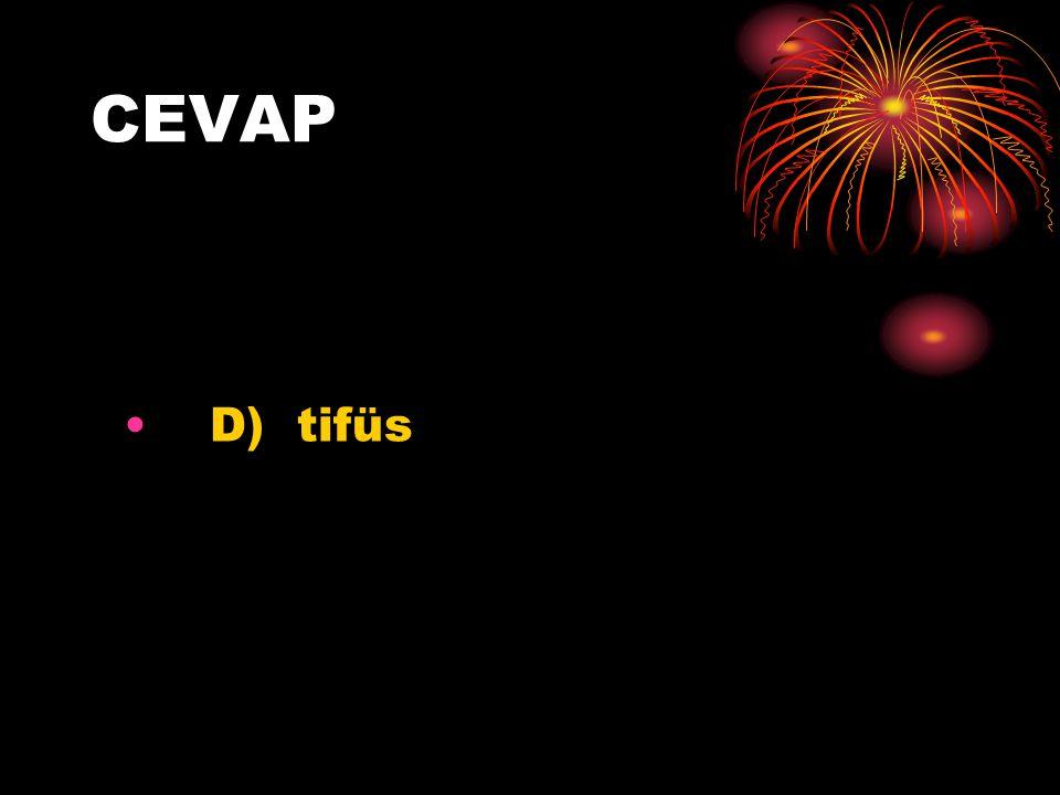 CEVAP D) tifüs