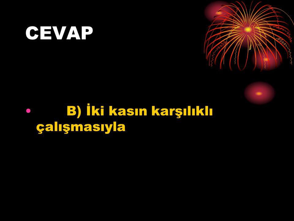 CEVAP B) İki kasın karşılıklı çalışmasıyla
