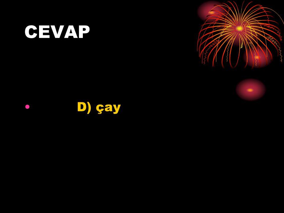 CEVAP D) çay