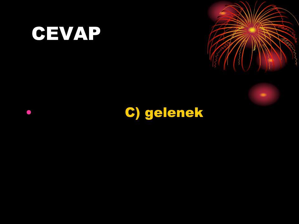 CEVAP C) gelenek