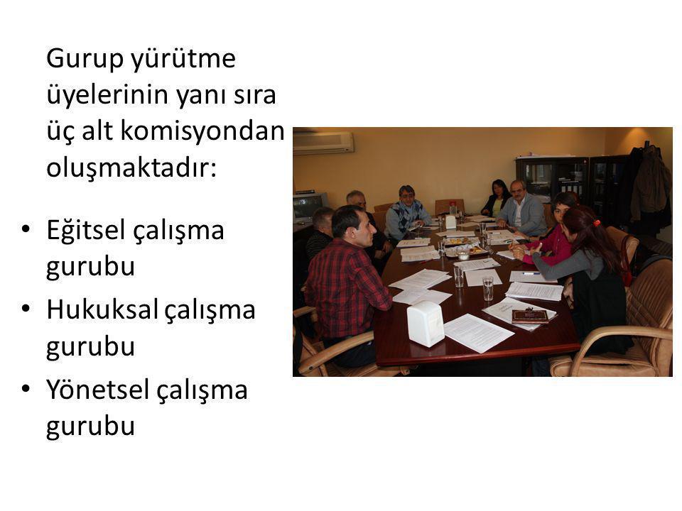 Gurup yürütme üyelerinin yanı sıra üç alt komisyondan oluşmaktadır: Eğitsel çalışma gurubu Hukuksal çalışma gurubu Yönetsel çalışma gurubu