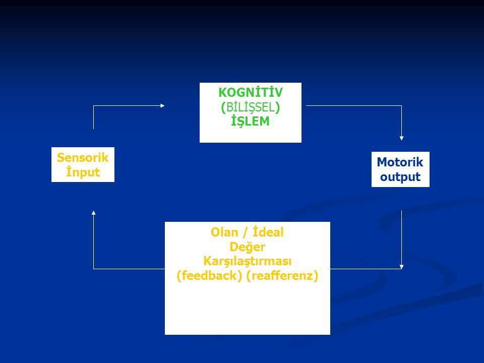 Olan / İdeal Değer Karşılaştırması (feedback) (reafferenz) KOGNİTİV (BİLİŞSEL) İŞLEM Sensorik İnput Motorik output