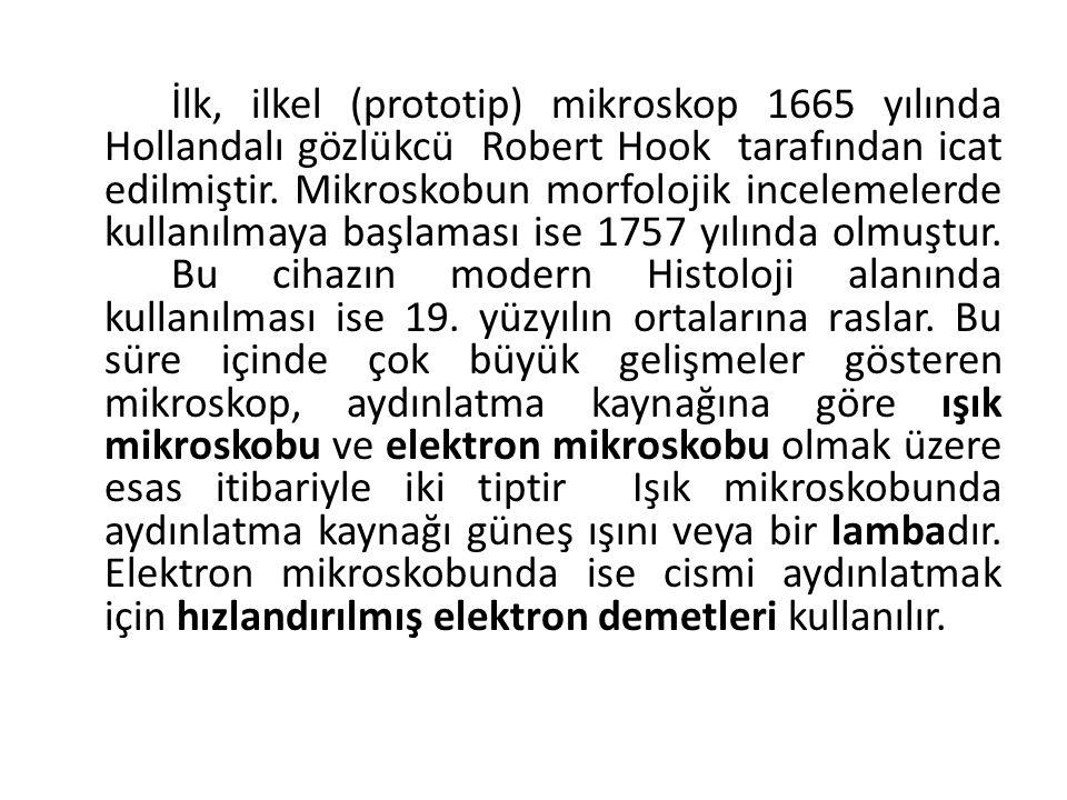 İlk, ilkel (prototip) mikroskop 1665 yılında Hollandalı gözlükcü Robert Hook tarafından icat edilmiştir. Mikroskobun morfolojik incelemelerde kullanıl