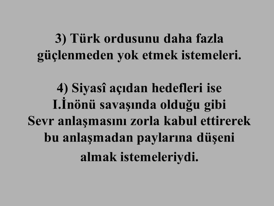 3) Türk ordusunu daha fazla güçlenmeden yok etmek istemeleri.