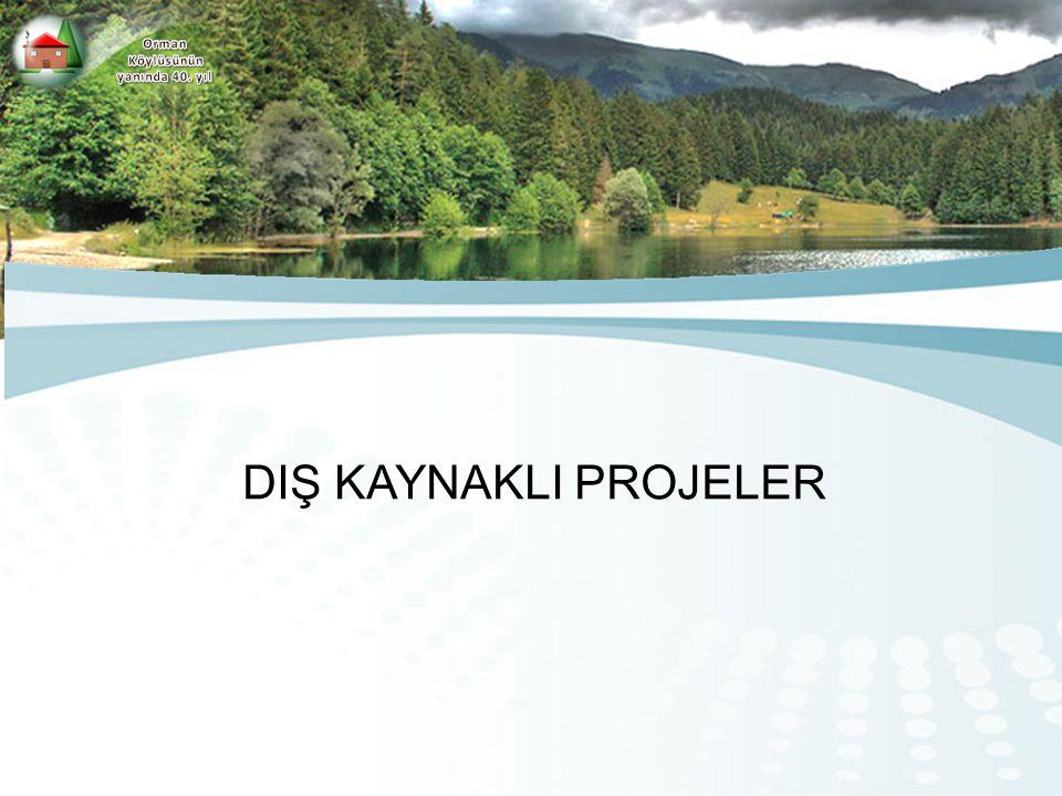 UYGULAMALARI SONUÇLANMIŞ PROJELER Genel Müdürlüğümüz bugüne kadar; - Muş-Bingöl Kırsal Kalkınma Projesi (1991-2001), - Yozgat Kırsal Kalkınma Projesi (1991-2001) ve - Ordu Giresun Kırsal Kalkınma Projeleri (1991-2001), - Doğu Anadolu Su Havzaları Rehabilitasyon Proje'lerinde (1999-2005) görev almıştır.