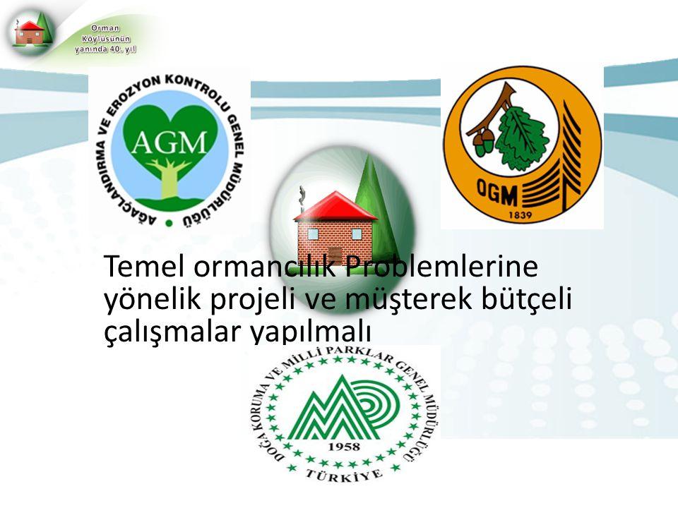 Temel ormancılık Problemlerine yönelik projeli ve müşterek bütçeli çalışmalar yapılmalı