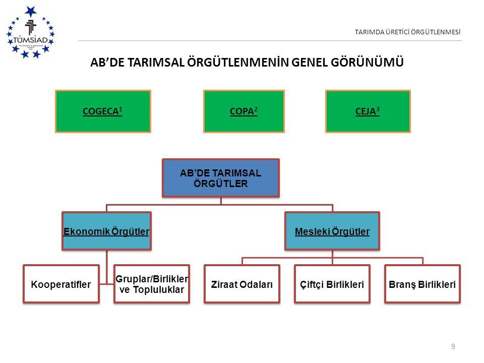 TARIMDA ÜRETİCİ ÖRGÜTLENMESİ AB'DE TARIMSAL ÖRGÜTLENMENİN GENEL GÖRÜNÜMÜ 9 AB'DE TARIMSAL ÖRGÜTLER Ekonomik Örgütler Kooperatifler Gruplar/Birlikler v