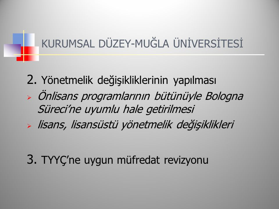 KURUMSAL DÜZEY-MUĞLA ÜNİVERSİTESİ 2.