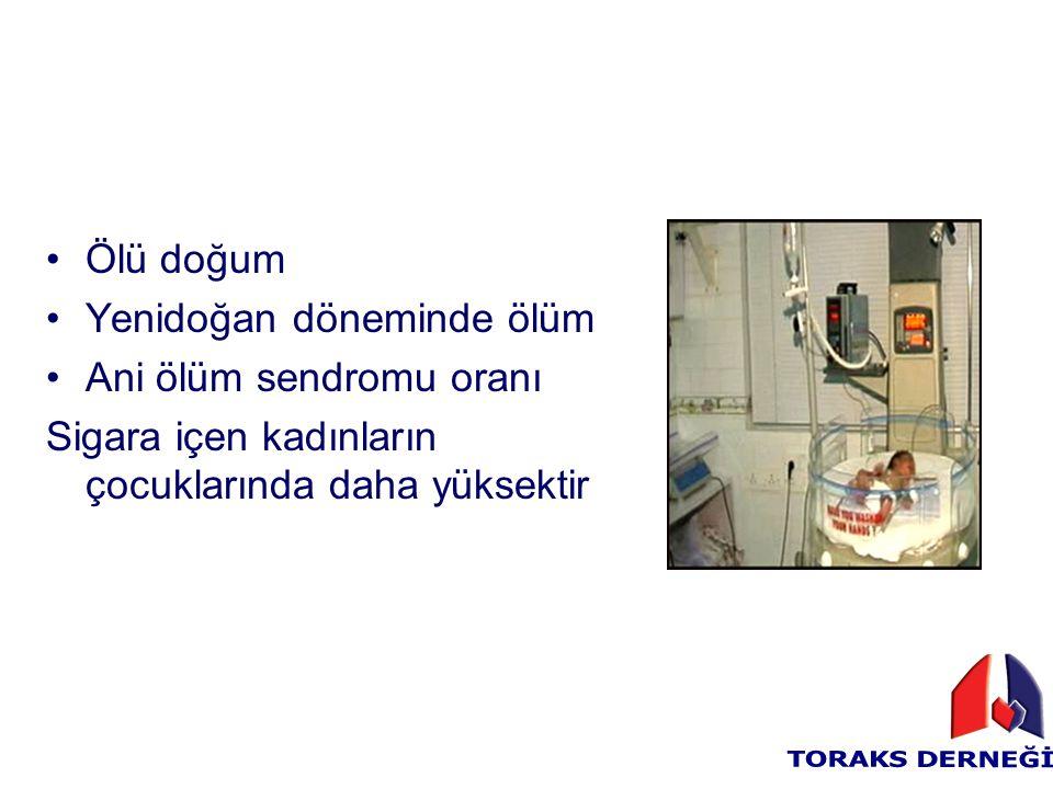 Ölü doğum Yenidoğan döneminde ölüm Ani ölüm sendromu oranı Sigara içen kadınların çocuklarında daha yüksektir