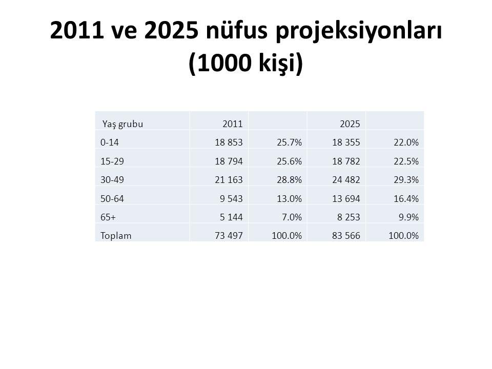 2011 ve 2025 nüfus projeksiyonları (1000 kişi) Yaş grubu2011 2025 0-14 18 85325.7% 18 35522.0% 15-29 18 79425.6% 18 78222.5% 30-49 21 16328.8% 24 48229.3% 50-64 9 54313.0% 13 69416.4% 65+ 5 1447.0% 8 2539.9% Toplam73 497100.0%83 566100.0%