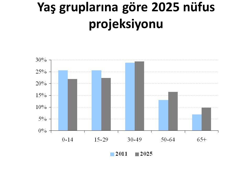 Yaş gruplarına göre 2025 nüfus projeksiyonu