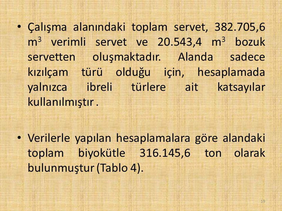 Çalışma alanındaki toplam servet, 382.705,6 m 3 verimli servet ve 20.543,4 m 3 bozuk servetten oluşmaktadır.