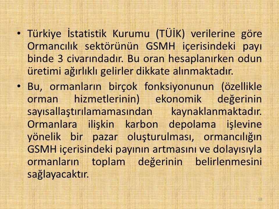 Türkiye İstatistik Kurumu (TÜİK) verilerine göre Ormancılık sektörünün GSMH içerisindeki payı binde 3 civarındadır.