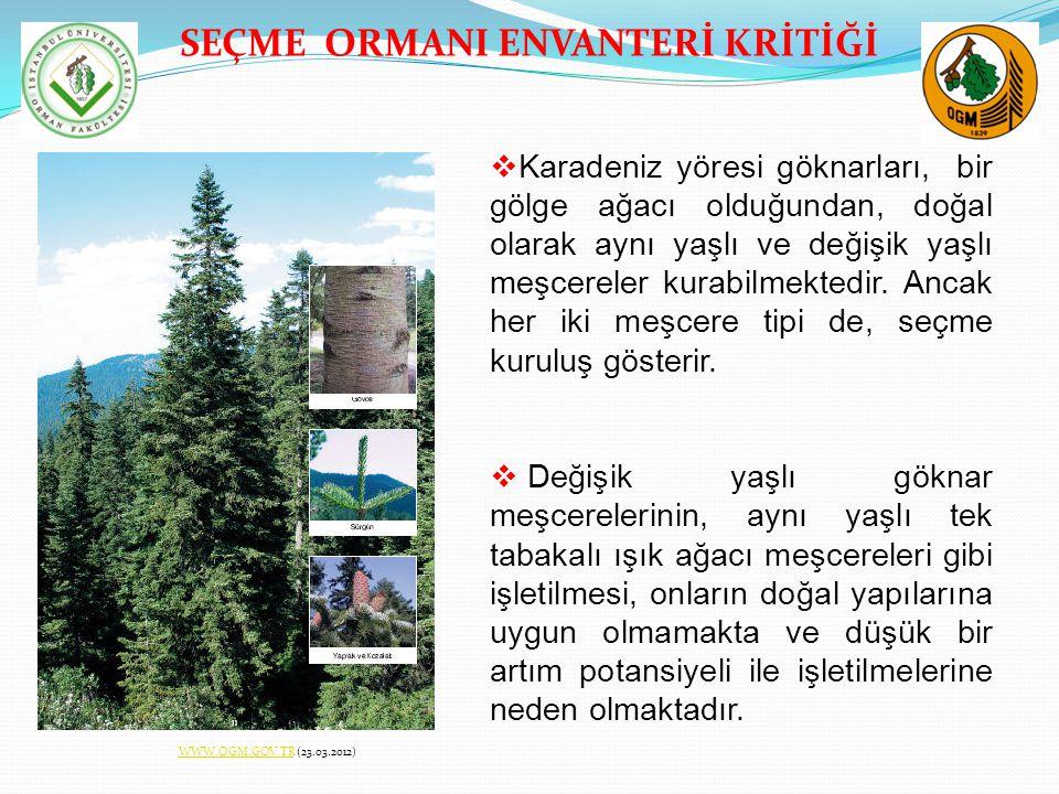 SEÇME ORMANI ENVANTERİ KRİTİĞİ  Karadeniz yöresi göknarları, bir gölge ağacı olduğundan, doğal olarak aynı yaşlı ve değişik yaşlı meşcereler kurabilm