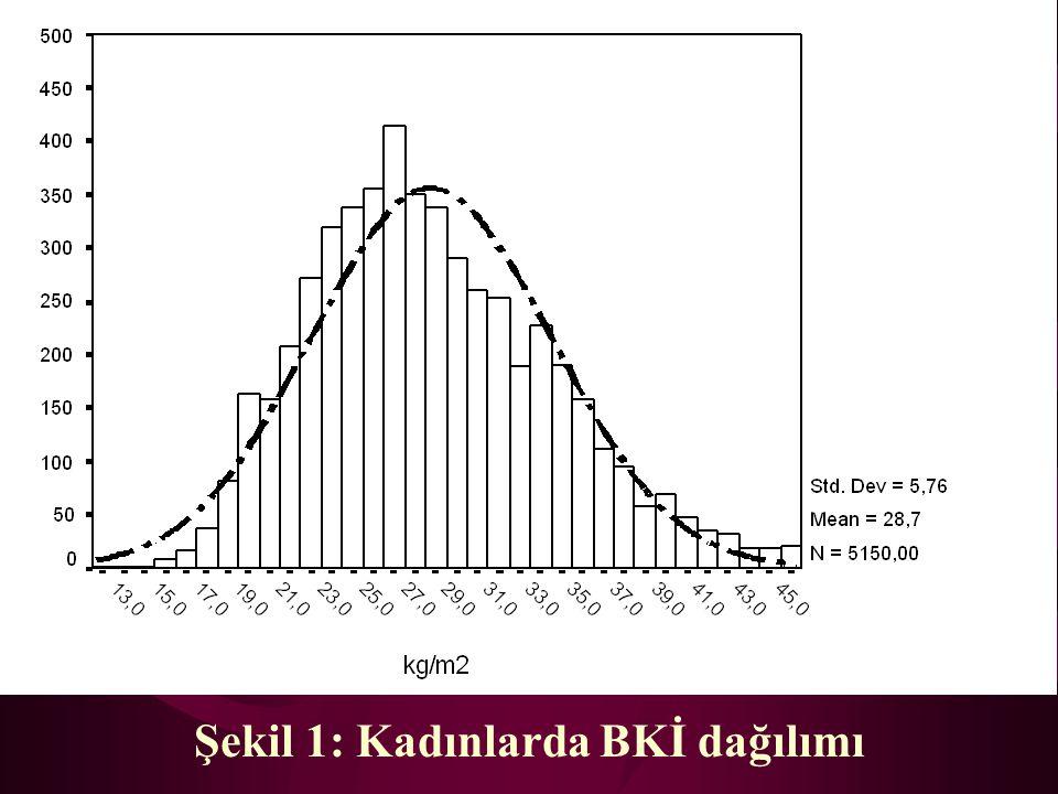 Tablo 2c: Cinsiyete ve yaş gruplarına göre BKİ değerleri YaşKadınErkekToplam >=71 Ortalama Std.Sapma Minimum Maksimum n 28,11 4,97 14,67 41,21 163 26,