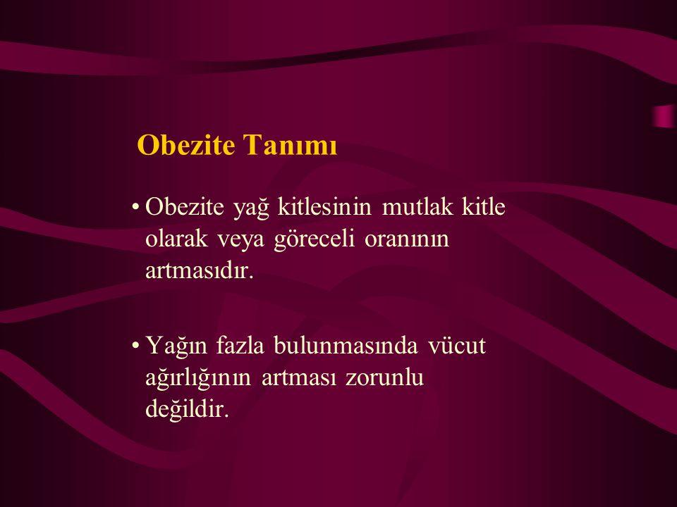 OBEZİTE EPİDEMİYOLOJİSİ Prof. Dr. Hüsrev Hatemi