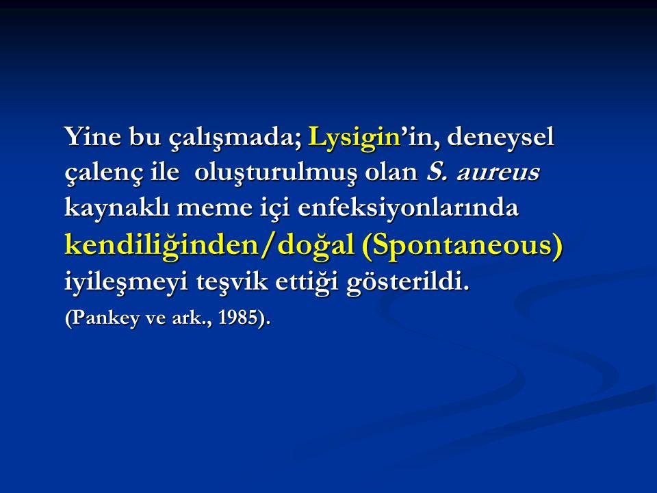 Yine bu çalışmada; Lysigin'in, deneysel çalenç ile oluşturulmuş olan S. aureus kaynaklı meme içi enfeksiyonlarında kendiliğinden/doğal (Spontaneous) i