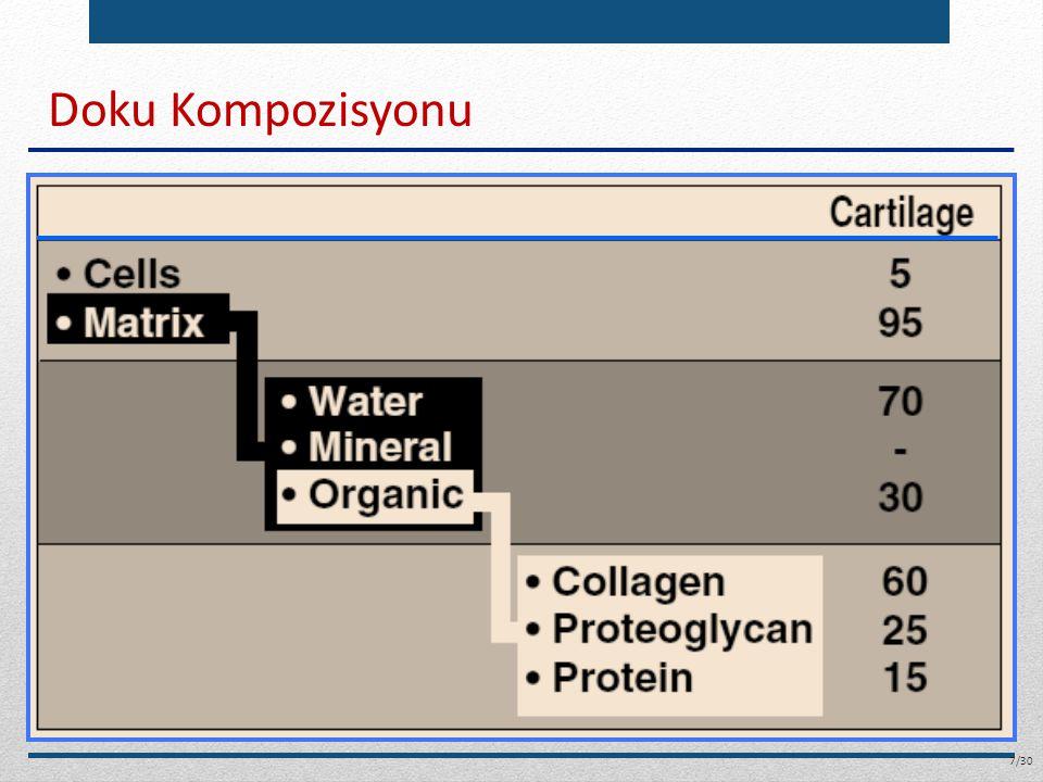 Kemik Yapısı Dış yüzey: periost.Büyümeden sorumlu hücre kaynağı.