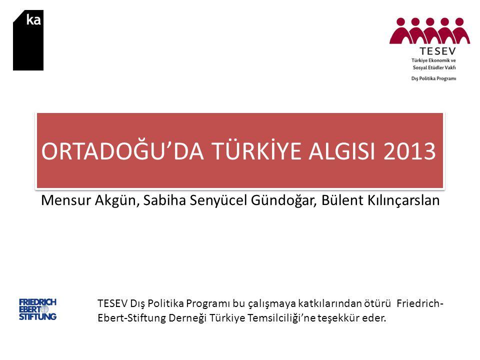 Mensur Akgün, Sabiha Senyücel Gündoğar, Bülent Kılınçarslan TESEV Dış Politika Programı bu çalışmaya katkılarından ötürü Friedrich- Ebert-Stiftung Derneği Türkiye Temsilciliği'ne teşekkür eder.