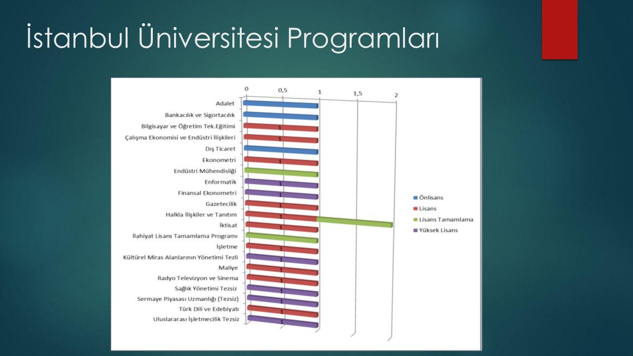 İstanbul Üniversitesi Programları