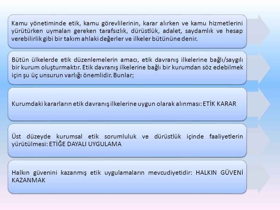 Tanımlar a) Denetim faaliyeti: Her türlü denetim, teftiş, inceleme, araştırma, soruşturma v.b.
